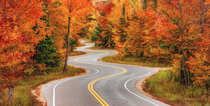long and winding road to business growth
